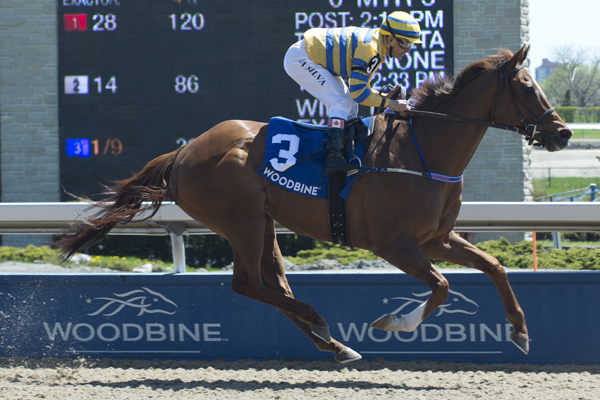 Pink Lloyd and jockey Eurico Rosa Da Silva winning the $100,000 New Providence Stakes on Sunday, May 13 at Woodbine Racetrack.