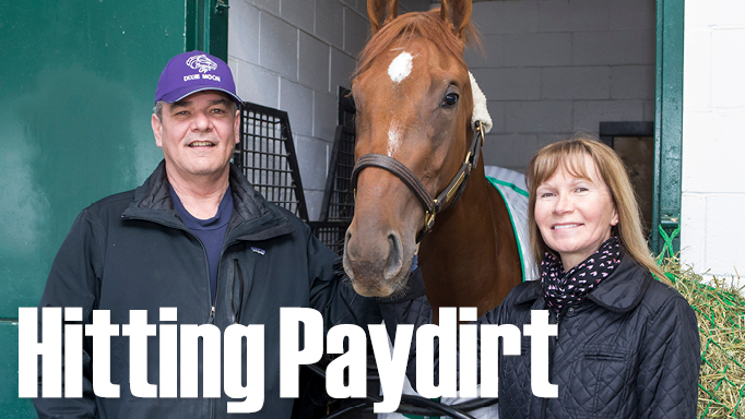 Thumbnail for Fitzhenrys Hit Breeding Paydirt