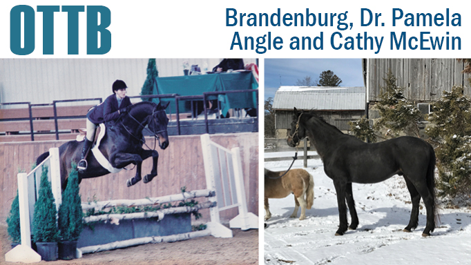 Thumbnail for OTTB: Brandenburg