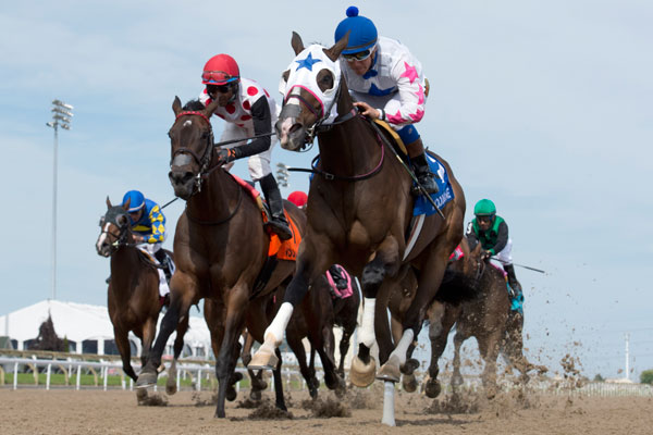 Code Warrior and jockey Luis Contreras winning the $125,000 Hendrie Stakes (Grade 3) on Sunday, June 10 at Woodbine Racetrack. Michael Burns Photo