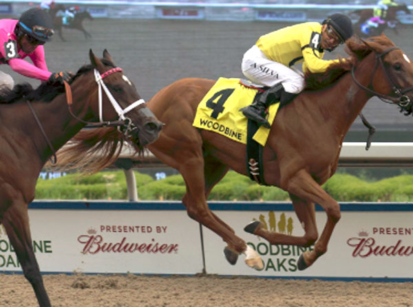 Dixie Moon eclipsed odds-on favourite Wonder Gadot to win the $500,000 Woodbine Oaks at Woodbine. Photo by Michael Burns