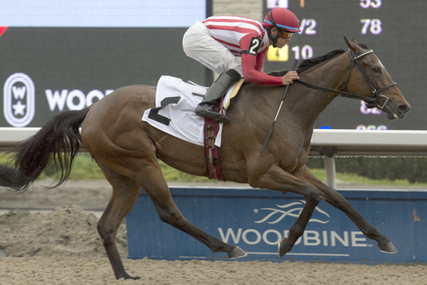Fairy Hill wins the Lady Angela at Woodbine.