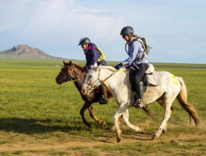 Beginning outside Ulaanbaatar, The Gobi Desert Cup is a 480-kilometre, six-day race across Mongolia. Photo ©The Gobi Desert Cup