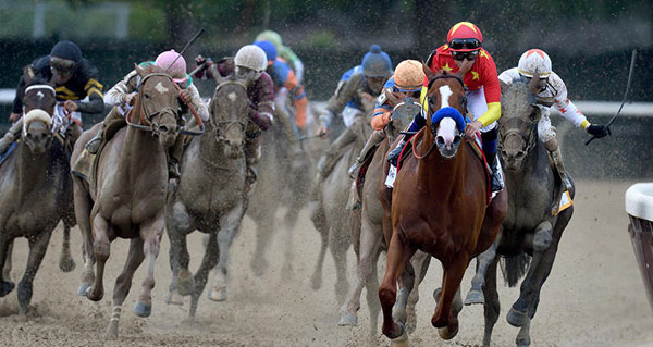 Justify won the 150th running of the Belmont Stakes, becoming the 13th Triple Crown winner. Hugh Deucey Photo