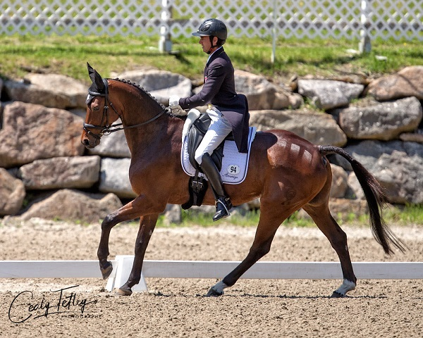 Felix Vogg (SUI) and and Colero lead the CCI3* at the MARS Incorporated Bromont CCI Three Day Event in Bromont, Quebec.