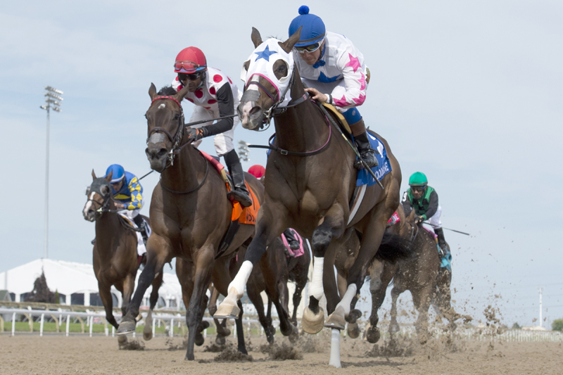 Code Warrior winning the 2018 Hendrie Stakes (Grade 3) on June 10 at Woodbine Racetrack.