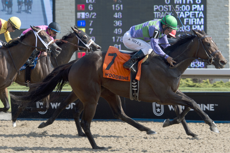 Gamble's Ghost and jockey Eurico Rosa Da Silva winning the $125,000 Ontario Matron Stakes (Grade 3) on Sunday, July 15 at Woodbine Racetrack.