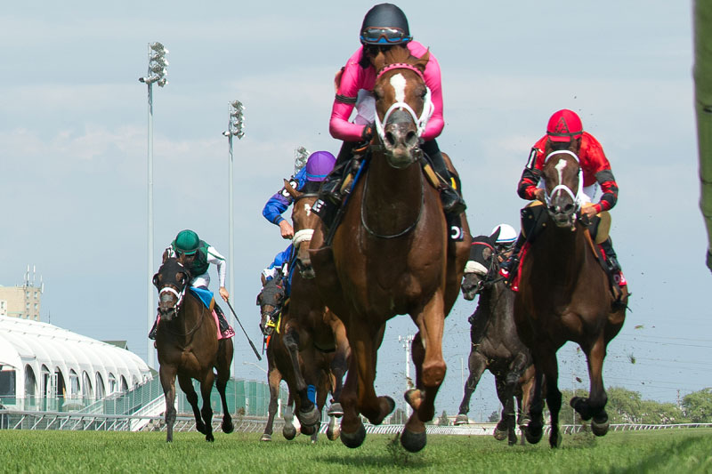 Got Stormy and jockey Patrick Husbands winning the $125,000 Ontario Colleen Stakes (Grade 3) on Saturday, July 21 at Woodbine Racetrack. (Michael Burns Photo