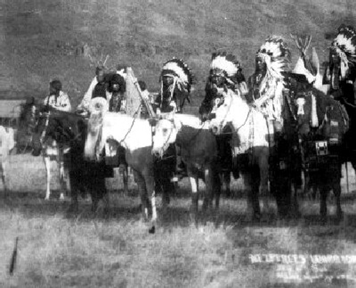 Nez Perce Appaloosa horses in 1860