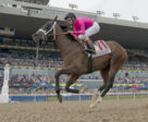 Wonder Gadot rolled to a 4¾-length victory in Saturday's 159th edition of the Queen's Plate.