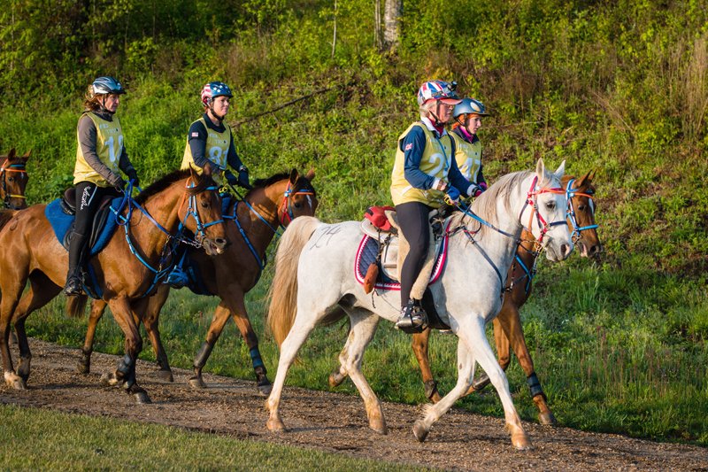 Participants during the endurance test ride at Tryon.