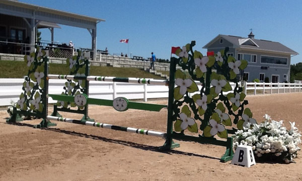 $20,000 Greenhawk 1.35m National Grand Prix
