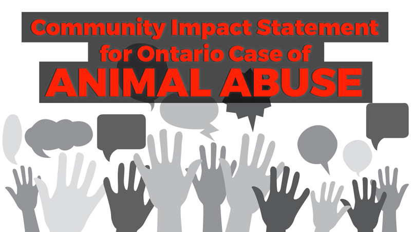 Thumbnail for Community Impact Statement for Ontario Case of Animal Abuse