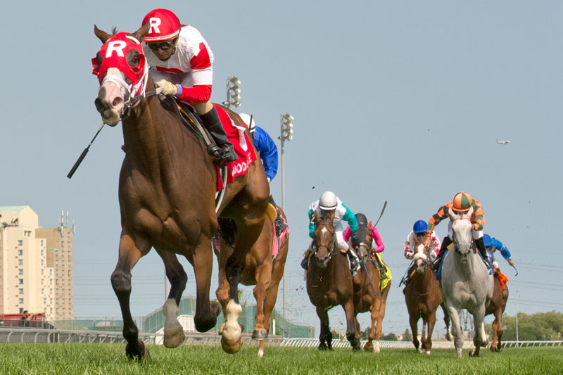 Daring Duchess and jockey Rafael Hernandez winning the $100,000 Flaming Page Stakes on Saturday, August 11 at Woodbine Racetrack. Michael Burns Photo