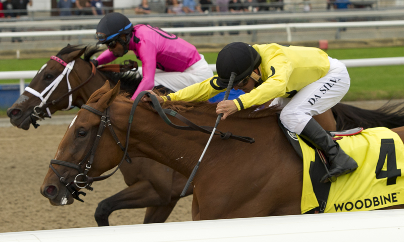 Dixie Moon looks to eclipse Wonder Where rivals on Sunday at Woodbine.