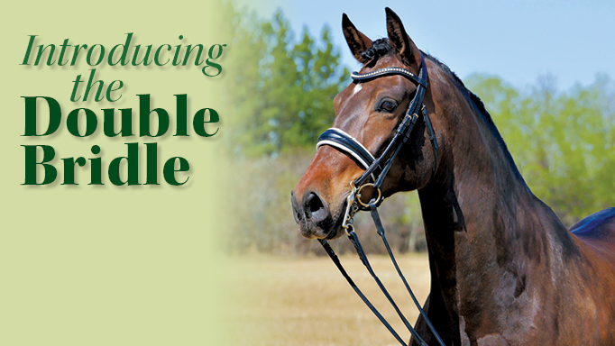 Thumbnail for Introducing the Double Bridle