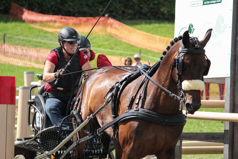 Canadian Kelly Houtappels-Bruder, who resides in Steensel, NED, was the first beneficiary of Equestrian Canada's Combined Driving Achievement Award program, earning an Advanced/FEI Level Achievement Award based on her exceptional results competing at the CAI 2/3* level with Flip. Photo by Krisztina Horvath