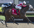 Line of Vision and jockey Luis Contreras winning the $100,000 Eternal Search Stakes on Sunday, August 5 at Woodbine Racetrack.