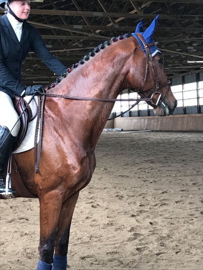 """Cameron riding Emily's horse, Sander """"Against All Odds"""" for her flat test."""
