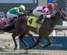 Maritime Breeze will face six other Ontario-bred two-year-old fillies in the Shady Well Stakes including Syllable, pictured here winning on June 16 at Woodbine.