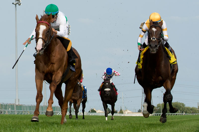 Utmost and jockey Alan Garcia (green cap) winning the $175,000 Sky Classic Stakes (Grade 2) over Tiz a Slam on Sunday, August 19 at Woodbine Racetrack. Michael Burns Photo