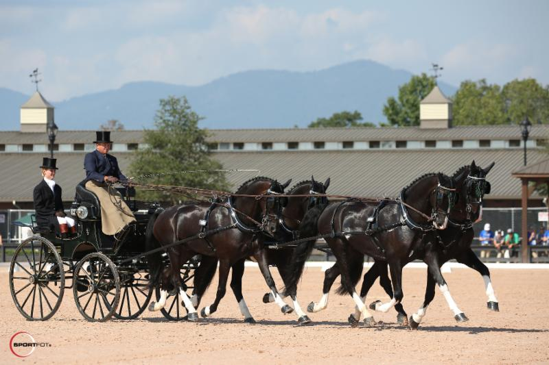 Boyd Exell and team during the Dressage phase of Polaris Driving competition.