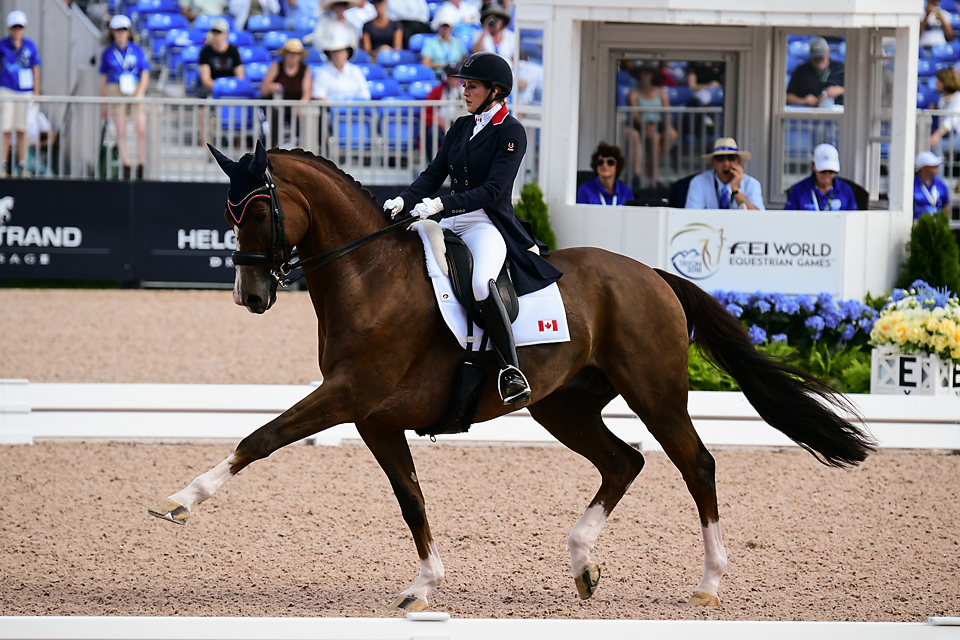Thumbnail for Dressage Day 2: Ups and Downs for Team Canada