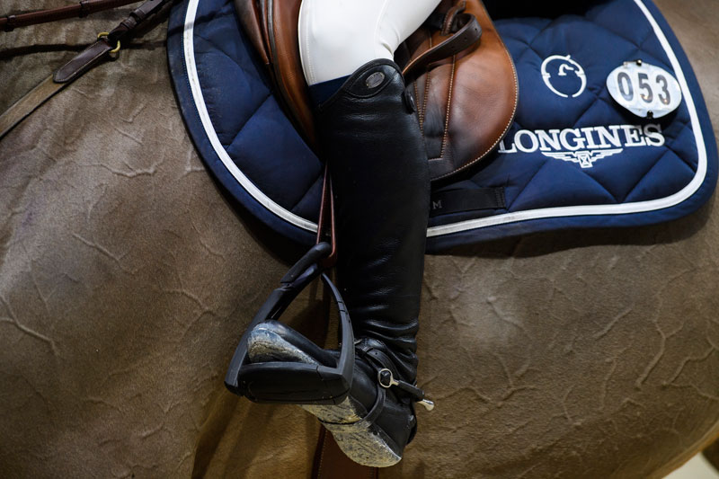 Thumbnail for What's On for Week Two at the World Equestrian Games