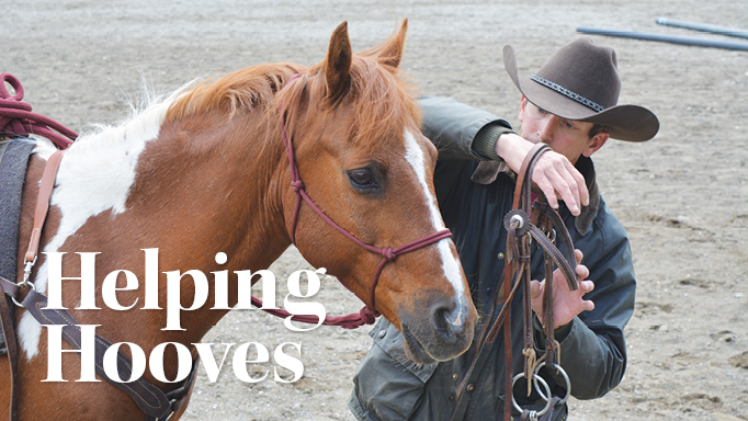 Thumbnail for Treating Veterans with Equine-Assisted Therapy