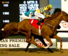 Pink Lloyd winning the OLG Kenora Stakes on August 29 at Woodbine Racetrack. Michael Burns Photo