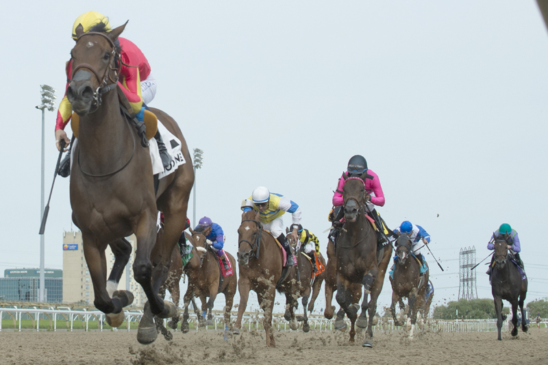 Shamrock Rose and jockey Jerome Lermyte winning the $100,000 La Lorgnette Stakes on Saturday, Sept. 8 at Woodbine Racetrack.