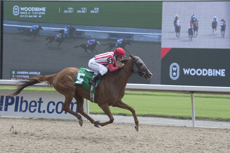 Unseen Angels and jockey Eurico Rosa Da Silva winning on July 27, 2018 at Woodbine Racetrack.