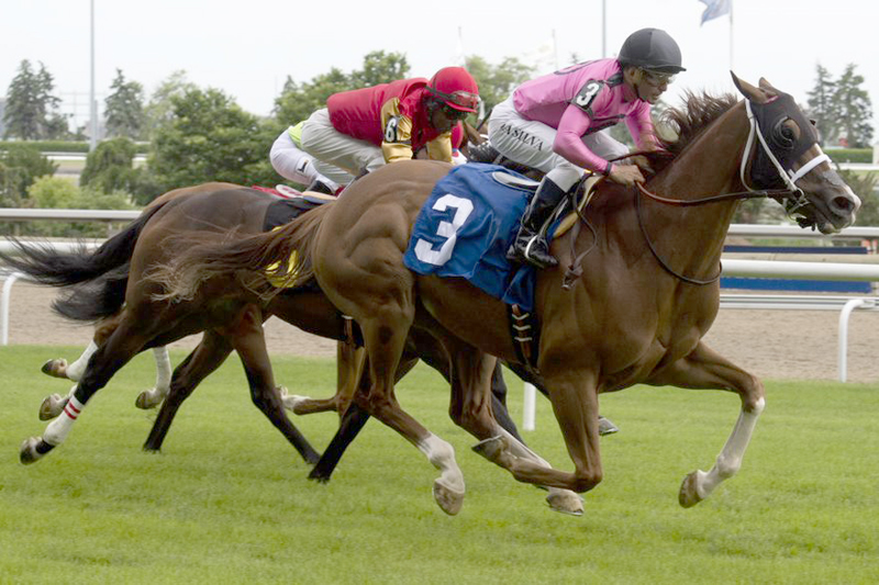 Vito Armata will saddle Vanish for the Ricoh Woodbine Mile on Saturday.