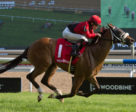 Wallace winning the Soaring Free Stakes on August 26 at Woodbine Racetrack. Michael Burns Photo