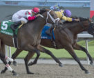 Wyatt's Town (#3) and jockey Eurico Rosa Da Silva winning the $100,000 Ontario Jockey Club Stakes ahead of Hemp Hemp Hurray (#5) and Rafael Hernandez on Sunday, Sept. 2 at Woodbine Racetrack.