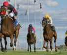 Zestina and jockey Gary Boulanger winning the $125,000 Ontario Damsel Stakes on Saturday, Sept. 29 at Woodbine Racetrack.