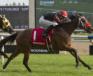 Zestina and jockey Gary Boulanger winning the $100,000 Passing Mood Stakes on Saturday, Sept. 1 at Woodbine Racetrack.