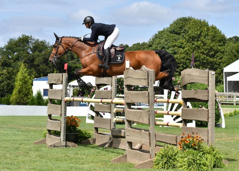 Canada's Erynn Ballard swept the 7-and-Under Young Horse Jumper Division at the Hampton Classic with Maestro Vica V/D Ark.