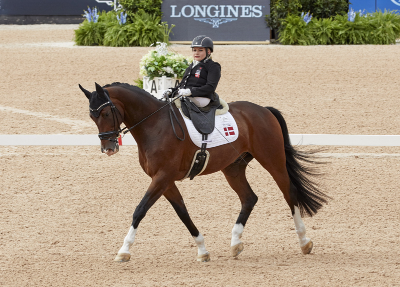 Denmark's Paralympian Stinna Tange Kaastrup with her mount Horsebo Smarties secures her first World Championship title at the FEI World Equestrian Games™ Tryon 2018.