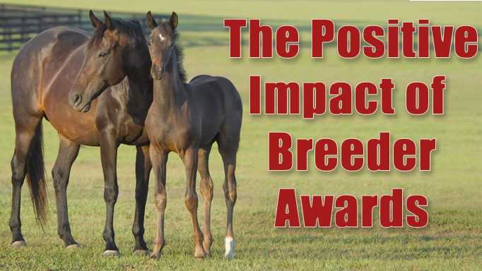 Thumbnail for The Positive Impact of Breeder Awards