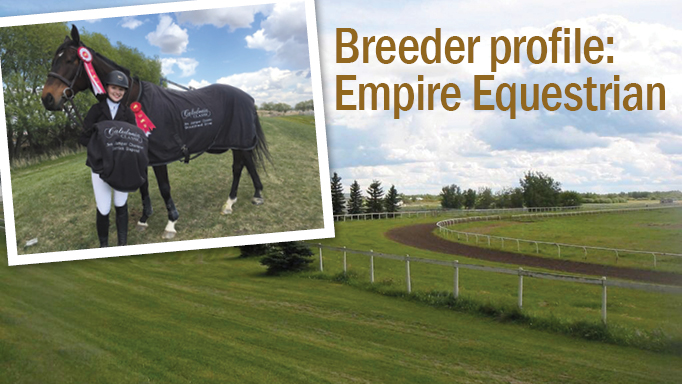 Thumbnail for Empire Equestrian