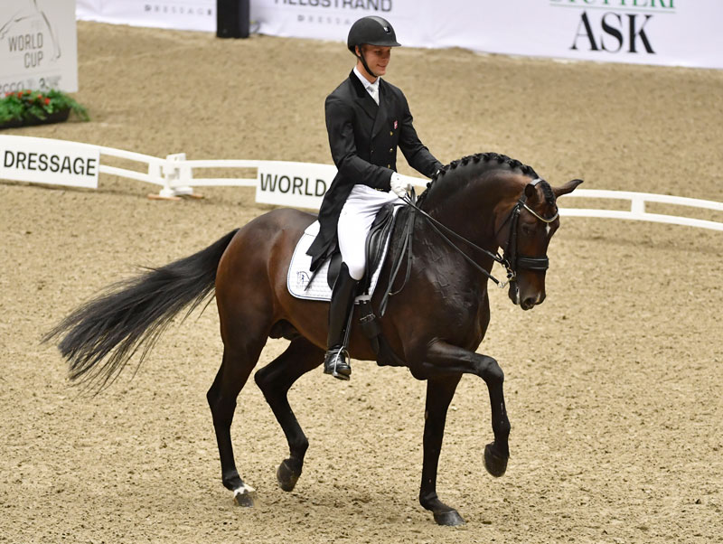Denmark's Daniel Bachmann Andersen and Blue Hors Zack won today's first leg of the new FEI Dressage World Cup™ 2018/2019 Western European League season on home ground in Herning, Denmark. Photo by FEI/Ridehesten.com/Kristine Ulsø Olsen
