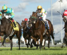 Hembree (#4) and jockey Irad Ortiz Jr. winning the $250,000 Nearctic Stakes (Grade 2) on Saturday, Oct. 13 at Woodbine Racetrack.