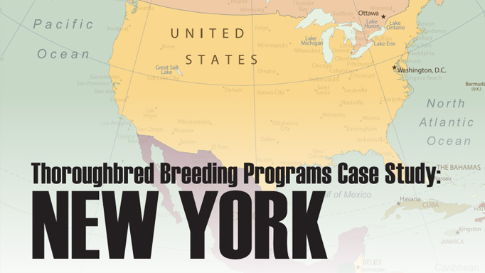 Thumbnail for Breeder Awards Case Study: New York