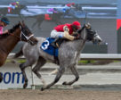 Strike Me Down, in rein to Patrick Husbands, winning on May 4 at Woodbine Racetrack. Michael Burns Photo