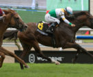 Tiz a Slam and Steven Bahen winning the Grade 2 Nijinsky Stakes on July 22 at Woodbine Racetrack. Michael Burns Photo