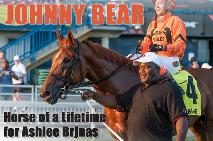 Thumbnail for Johnny Bear: Horse of a Lifetime for Brjnas