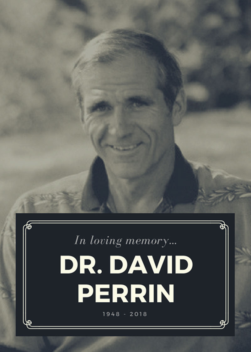 Thumbnail for In Memoriam: Dr. David Perrin