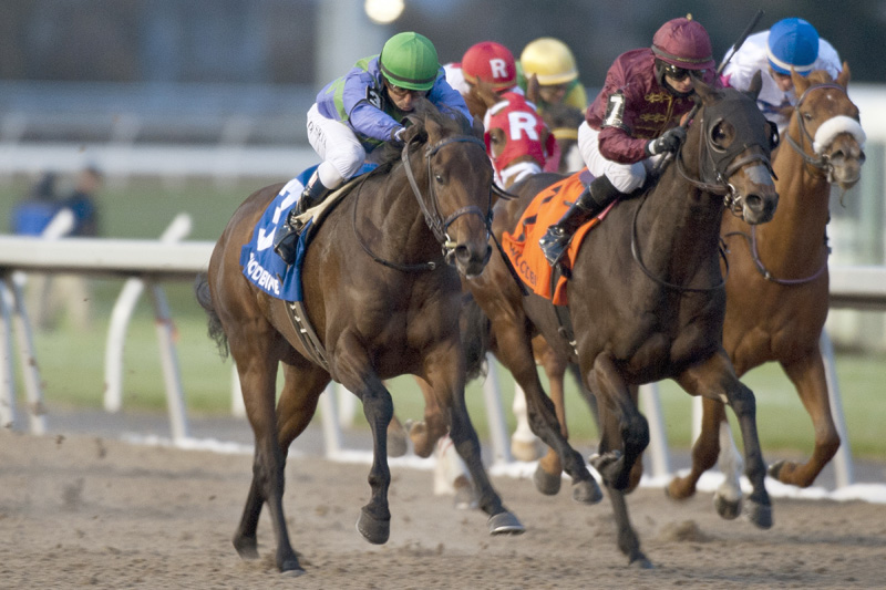 Avie's Flatter and jockey Eurico Rosa Da Silva winning the $225,000 Coronation Futurity on Sunday, Nov. 18 at Woodbine Racetrack.