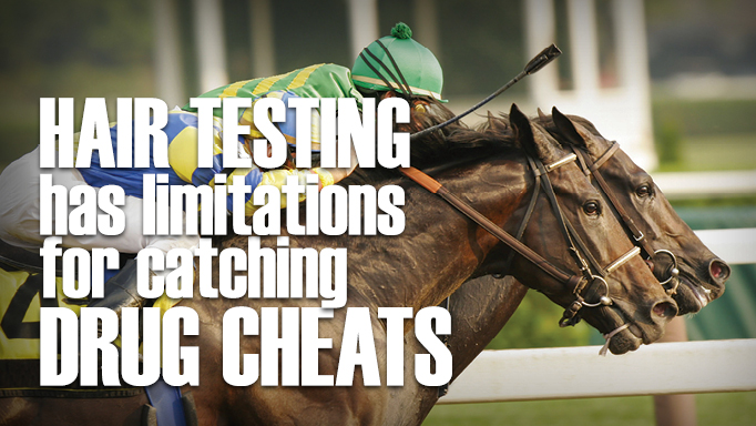 Thumbnail for Is Hair Testing on Racehorses Coming to Canada?